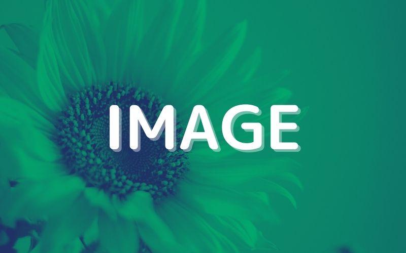 セルに画像を表示するIMAGE関数の使い方