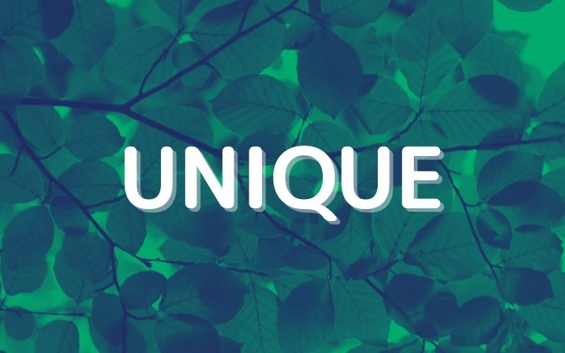 UNIQUE関数を使って重複するセルを削除しよう